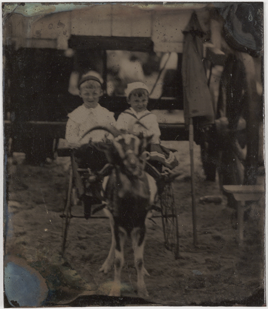 Two young boys in a goat cart, c.1880, National Media Museum Collection