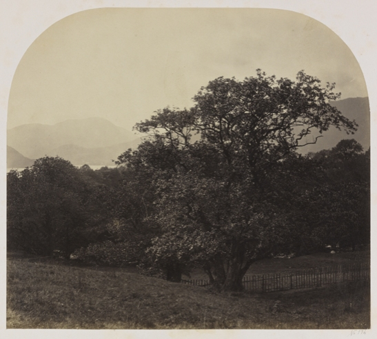 Distant View of Ullswater from Gabarrow Park, Roger Fenton, The Royal Photographic Society Collection, National Media Museum / SSPL. Creative Commons BY-NC-SA