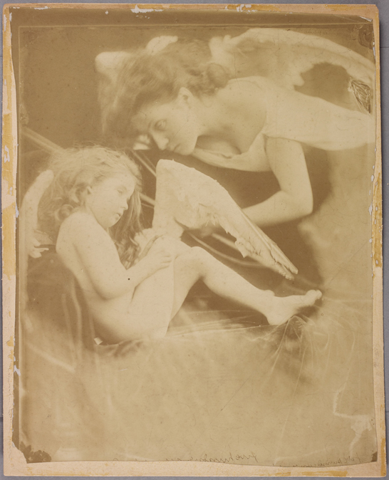 'Venus chiding Cupid and removing his wings: One of the Angel Series', 1874, Julia Margaret Cameron, The Royal Photographic Society Collection © National Media Museum, Bradford / SSPL. Creative Commons BY-NC-SA