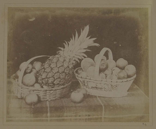 Plate XIV from The Pencil of Nature, A Fruit Piece, William Henry Fox Talbot © National Media Museum, Bradford / SSPL. Creative Commons BY-NC-SA